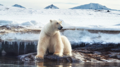 how-climate-change-affects-the-planet