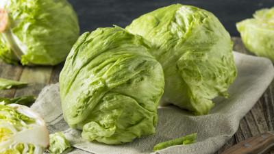 Heads of iceberg lettuce on kitchen towel