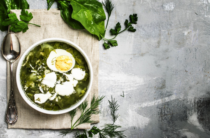 Sorrel soup with egg on gray table