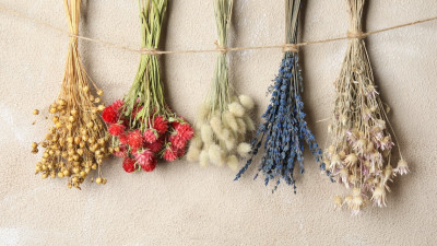 how-to-dry-flowers