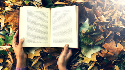 how-to-read-poetry