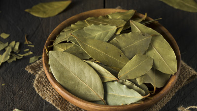 Bay leafs in wooden bowl with burlap