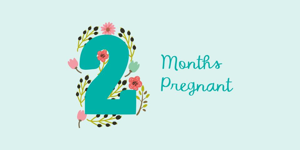 month02