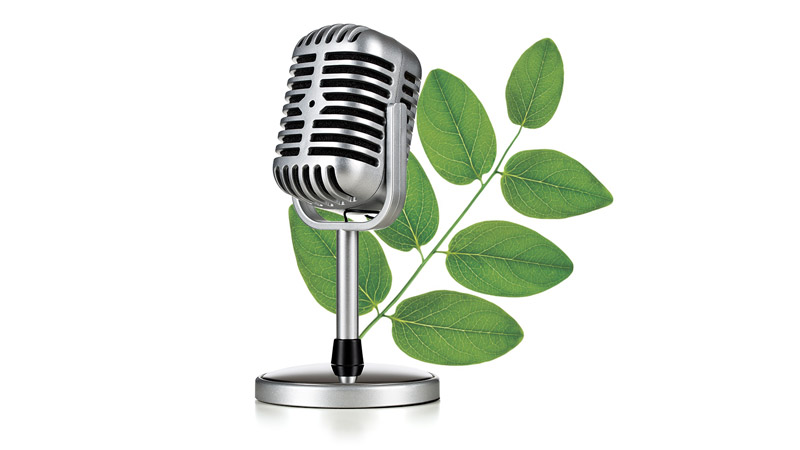 Microphone with leaves in the background
