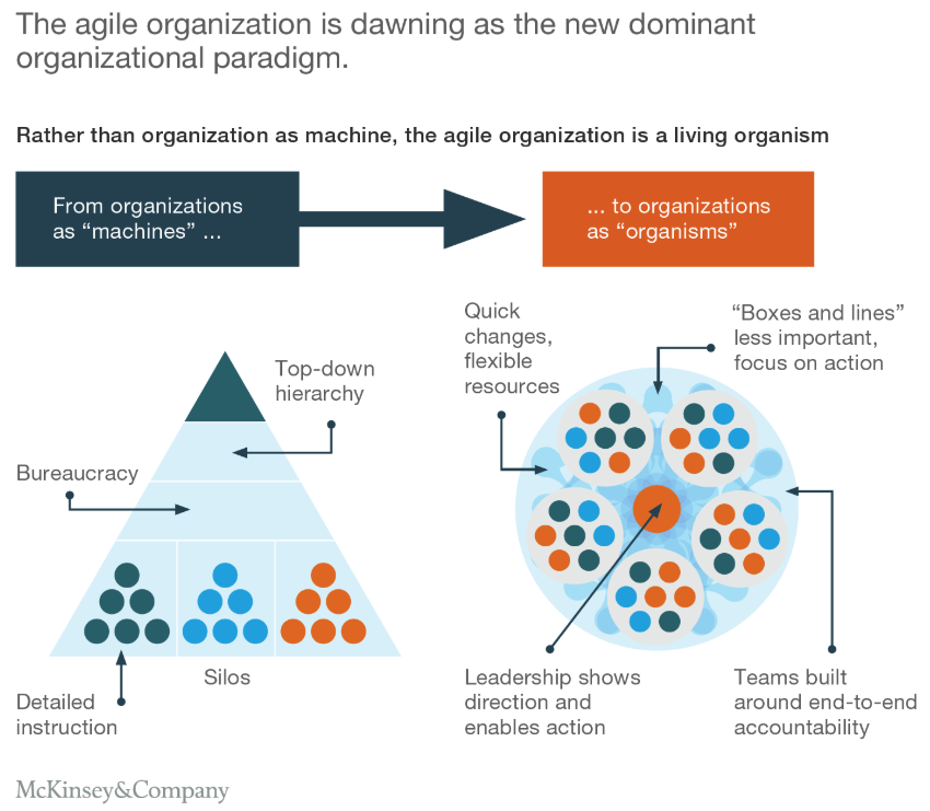 recruiting for agile organizations McKinsey