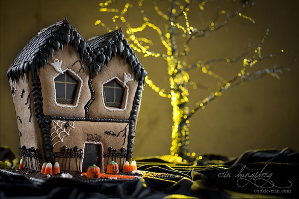 Haunted House by Cookie Erin