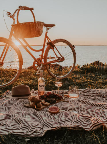 Summer picnic with Hartwall's rosé wine