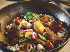 Vegan Japanese Katsu Curry