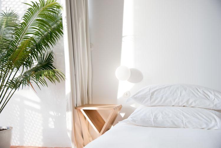 JDB Standard bed landscape