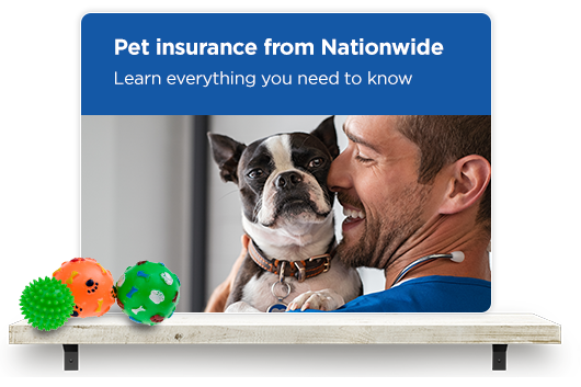 Pet insurance from Nationwide. Learn everything there is to know about it here.