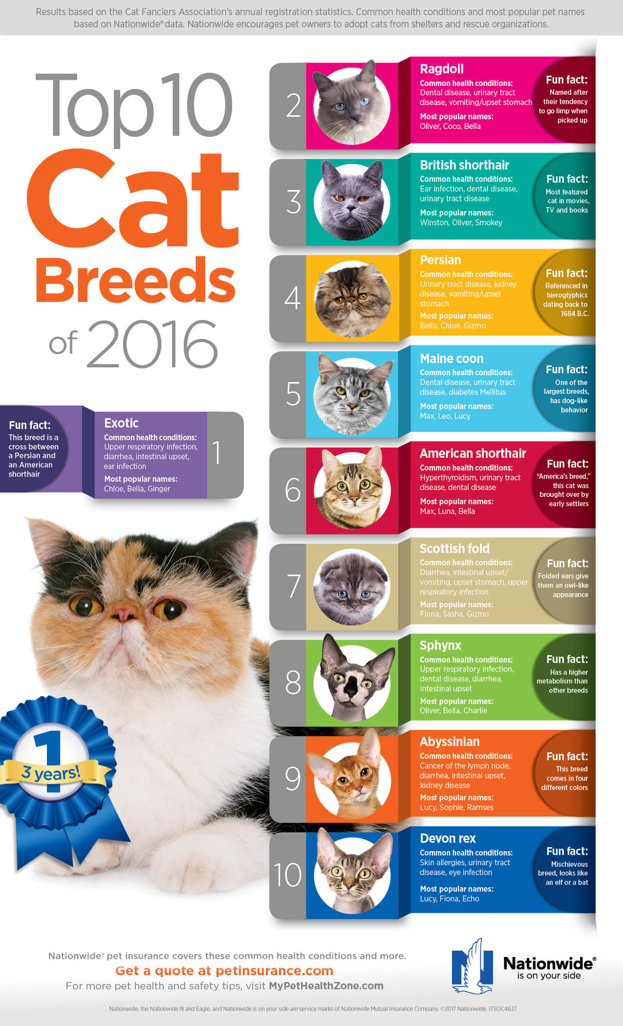 Top 10 Cat Breeds 2016 infographic FINAL