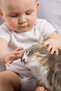 Infant with cat