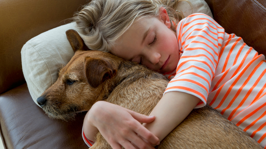 Pets Have Positive Therapeutic Effects