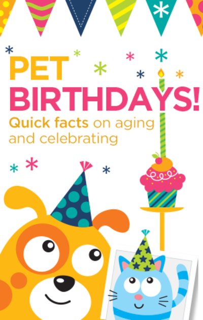 Pet Birthday Infographic