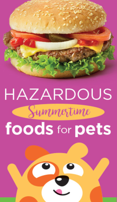 Hazardous Summertime Foods for Pets