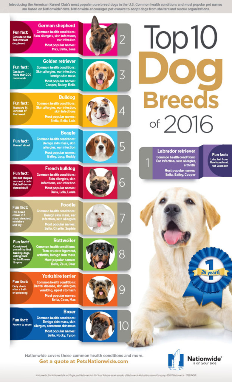 Top10 Dog Breeds 2016