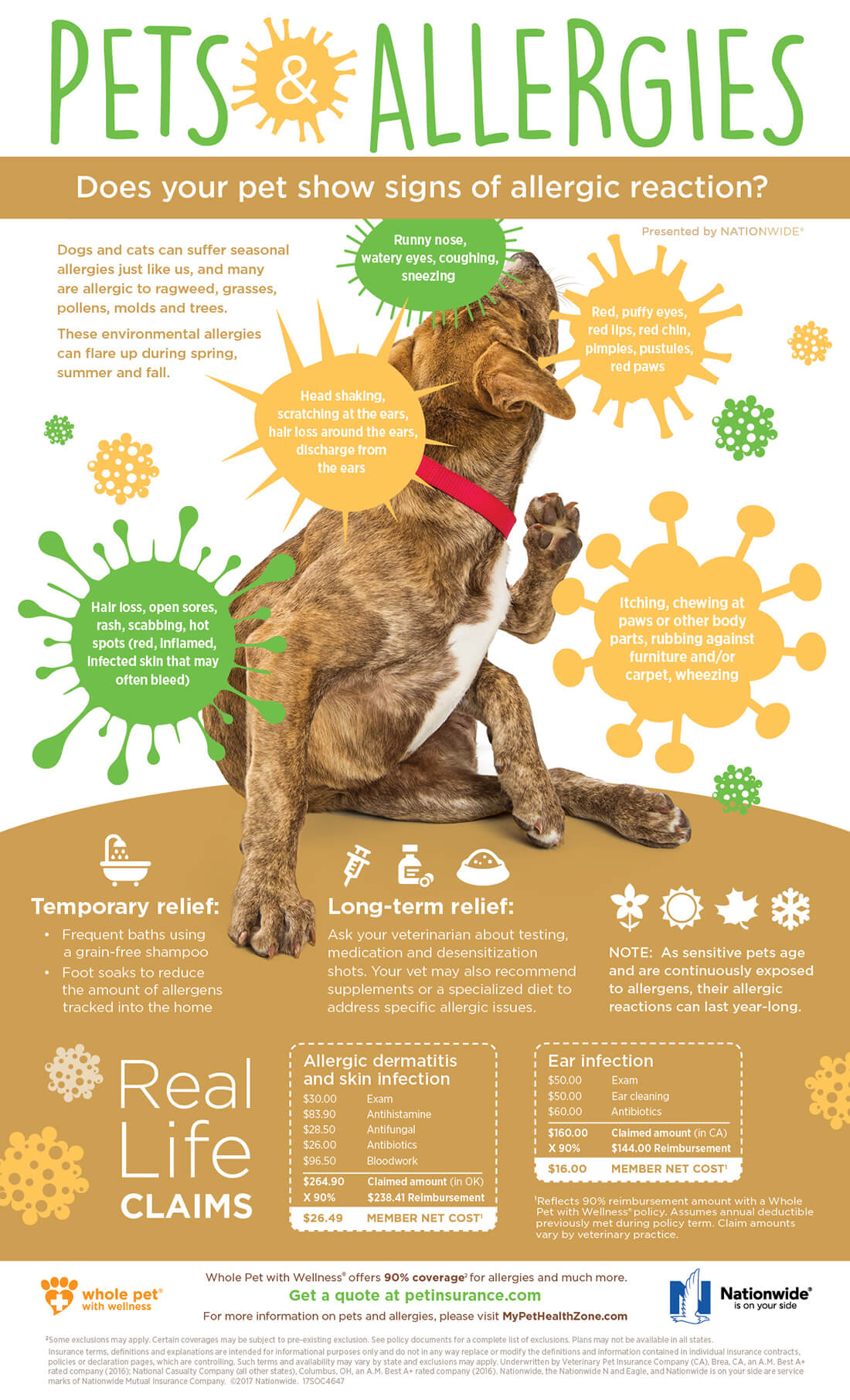 4647 SOC Pets and Seasonal Allergies Infographic