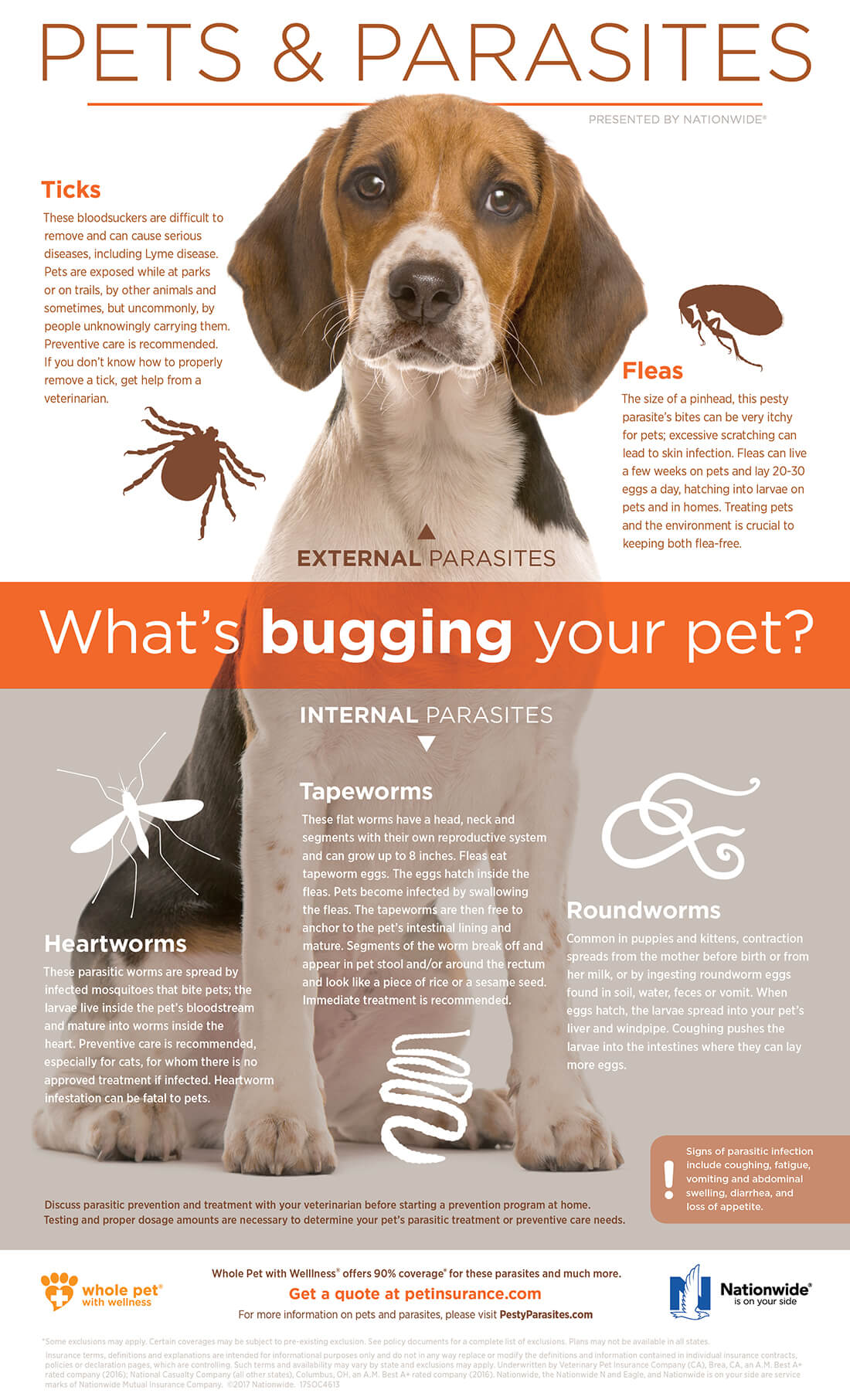 Pets and Parasites Infographic