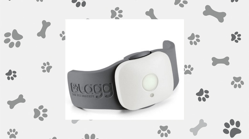 GPS Pet Tracker Collar