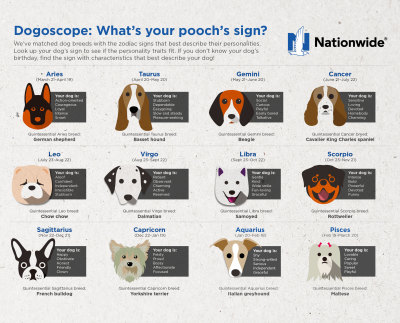 Pet Horoscope Infographic