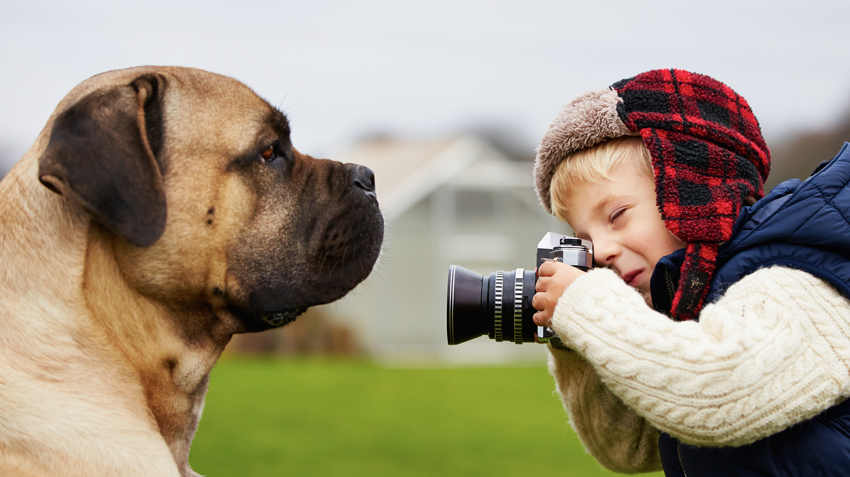 10 Pet Photography Tips