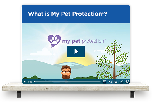 What is my Pet Protection?