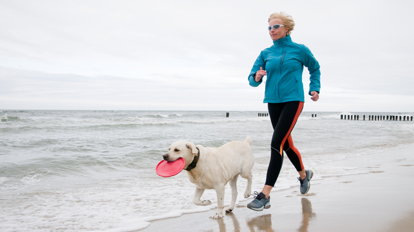 Best Dog Breeds for Runners