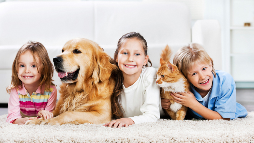 Tip #5: Pet Adoption and Children