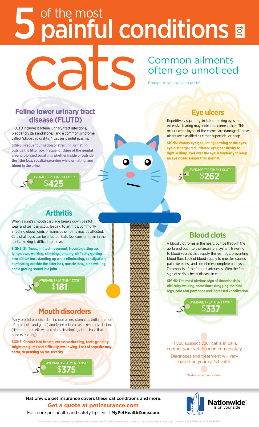 5-Painful-Conditions-for-Cats-Infographic-1100