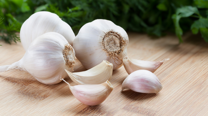 Garlic Toxicity and Pets | Pet Health