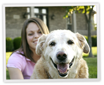 Compare Pet Insurance Plans for Dogs, Cats & More from ...
