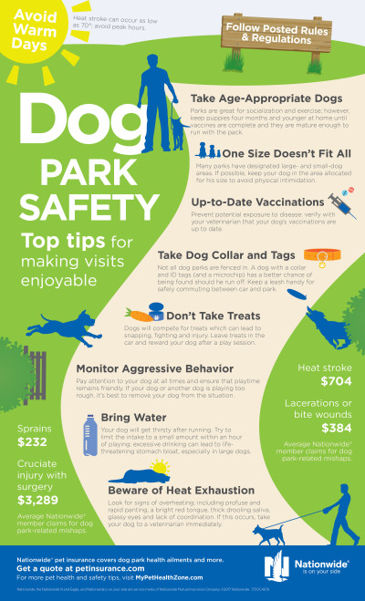 Dog Park Safety Infographic