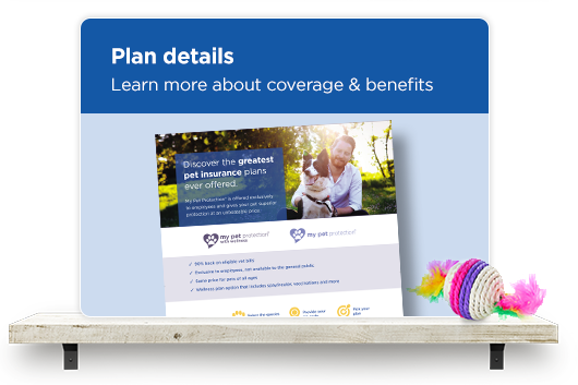 Plan details. Learn more about coverage & benefits.