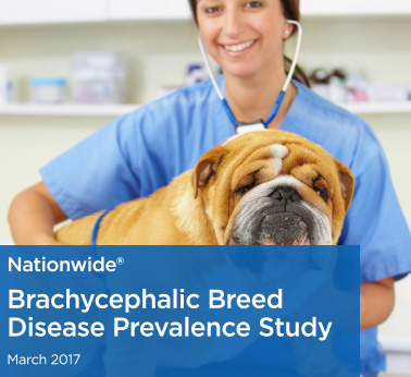Brachycephalic Breed Disease Prevalence Study