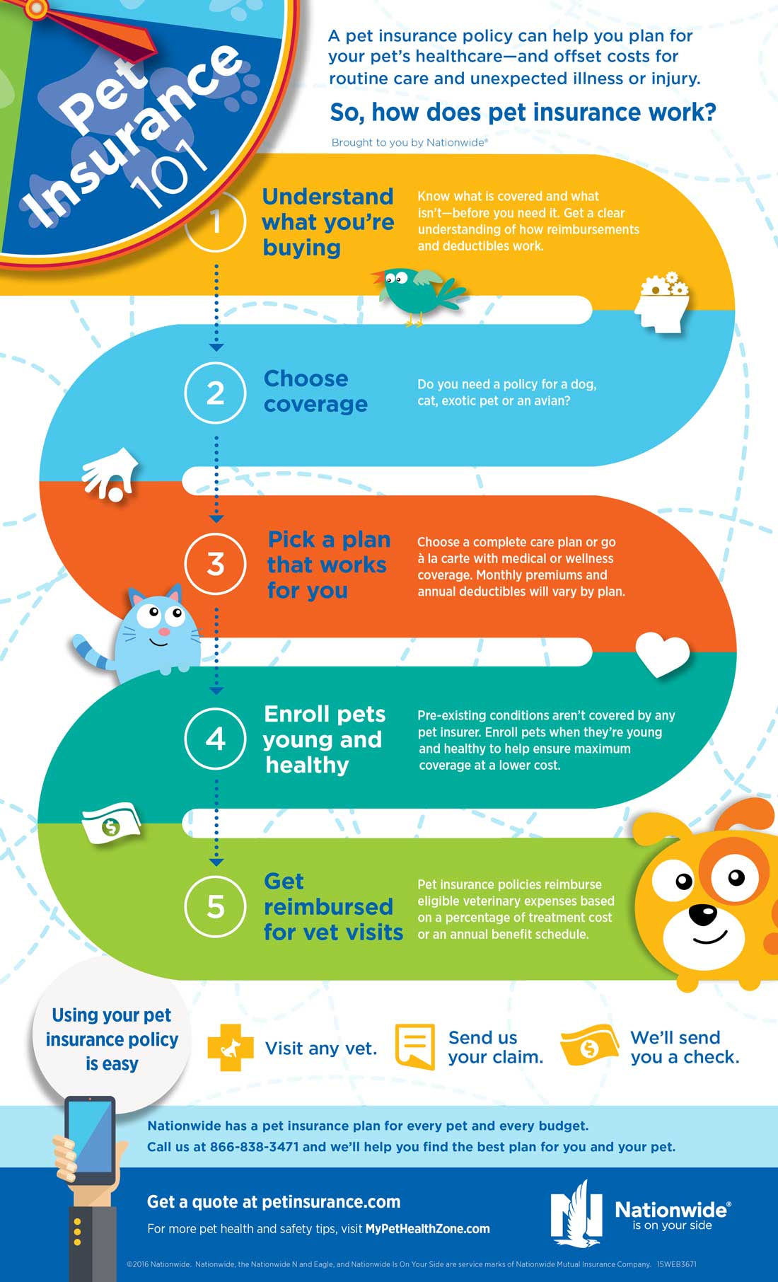 Pet-Insurance-101-Infographic-1