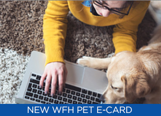 Referral-Thumbnail-WFH-Pet-Sweepstakes