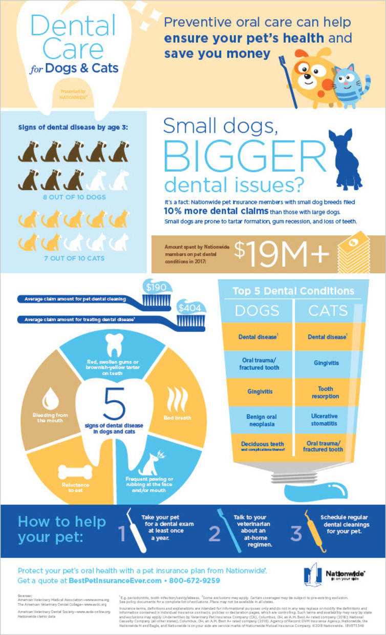Pet-Dental-Health-Infographic-2018-1