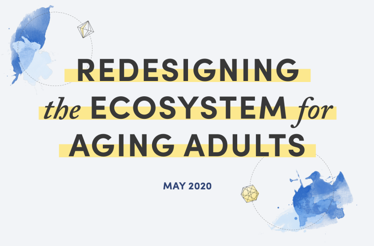 Redesigning the Ecosystem for Aging Adults