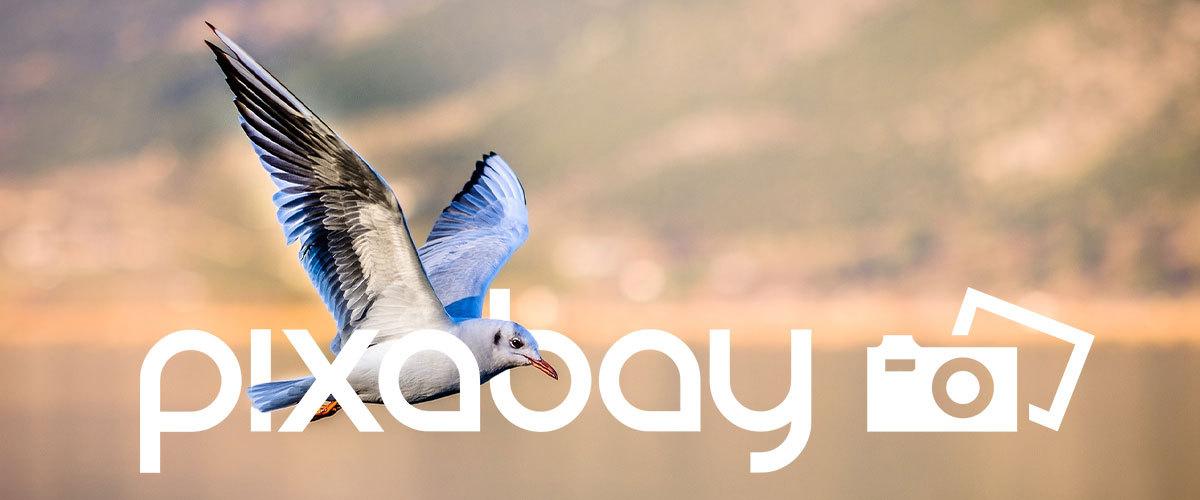 gratis-afbeeldingen-pixabay