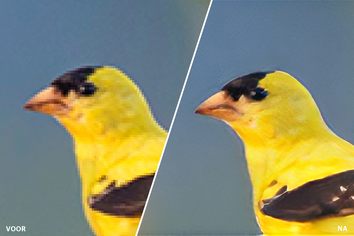 featured nieuwe-features-adobe-photoshop super-zoom
