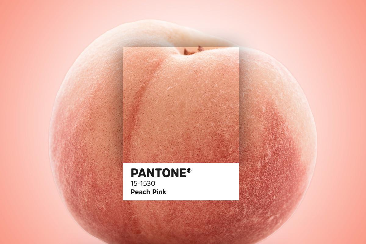 435 Pantonetrends blogbeelden4
