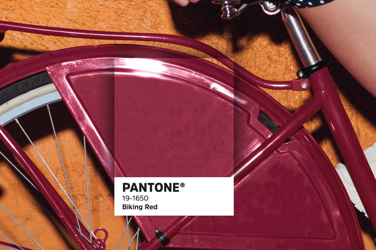 435 Pantonetrends blogbeelden2