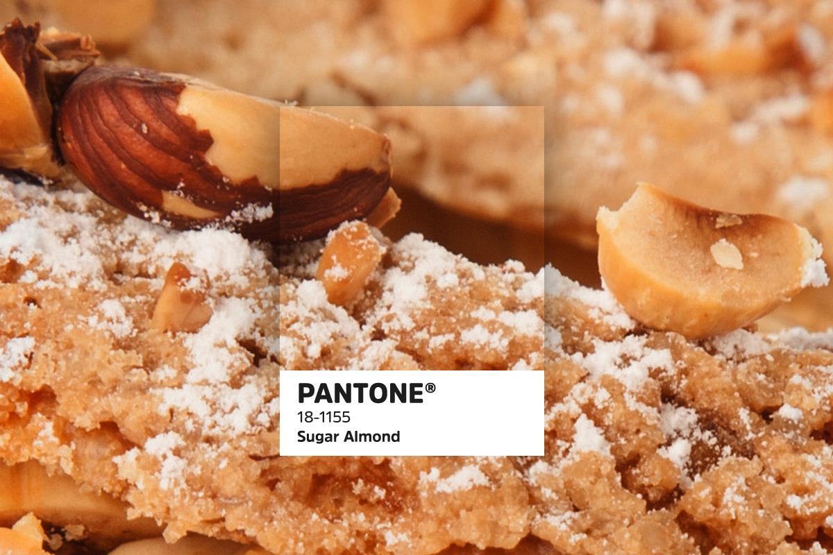 435 Pantonetrends blogbeelden7