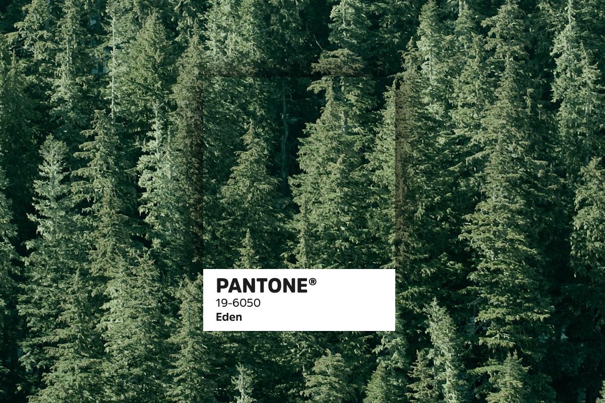 435 Pantonetrends blogbeelden12