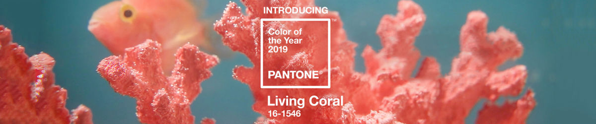 Pantone-color-of-the-year-2019: living coral