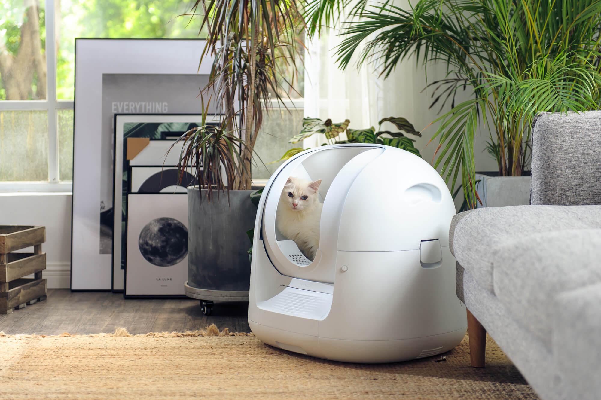 トイレ 自動 猫 Makuake いつものトイレで猫様の体重と尿量・回数を自動で記録するCatlog Board マクアケ