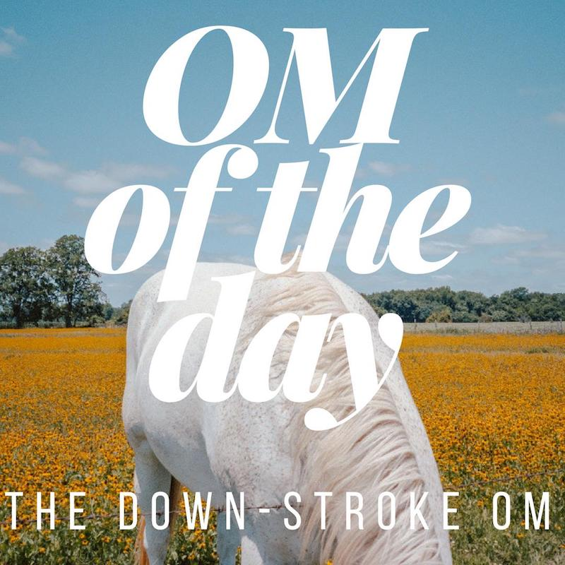horse om of the day downstroke om