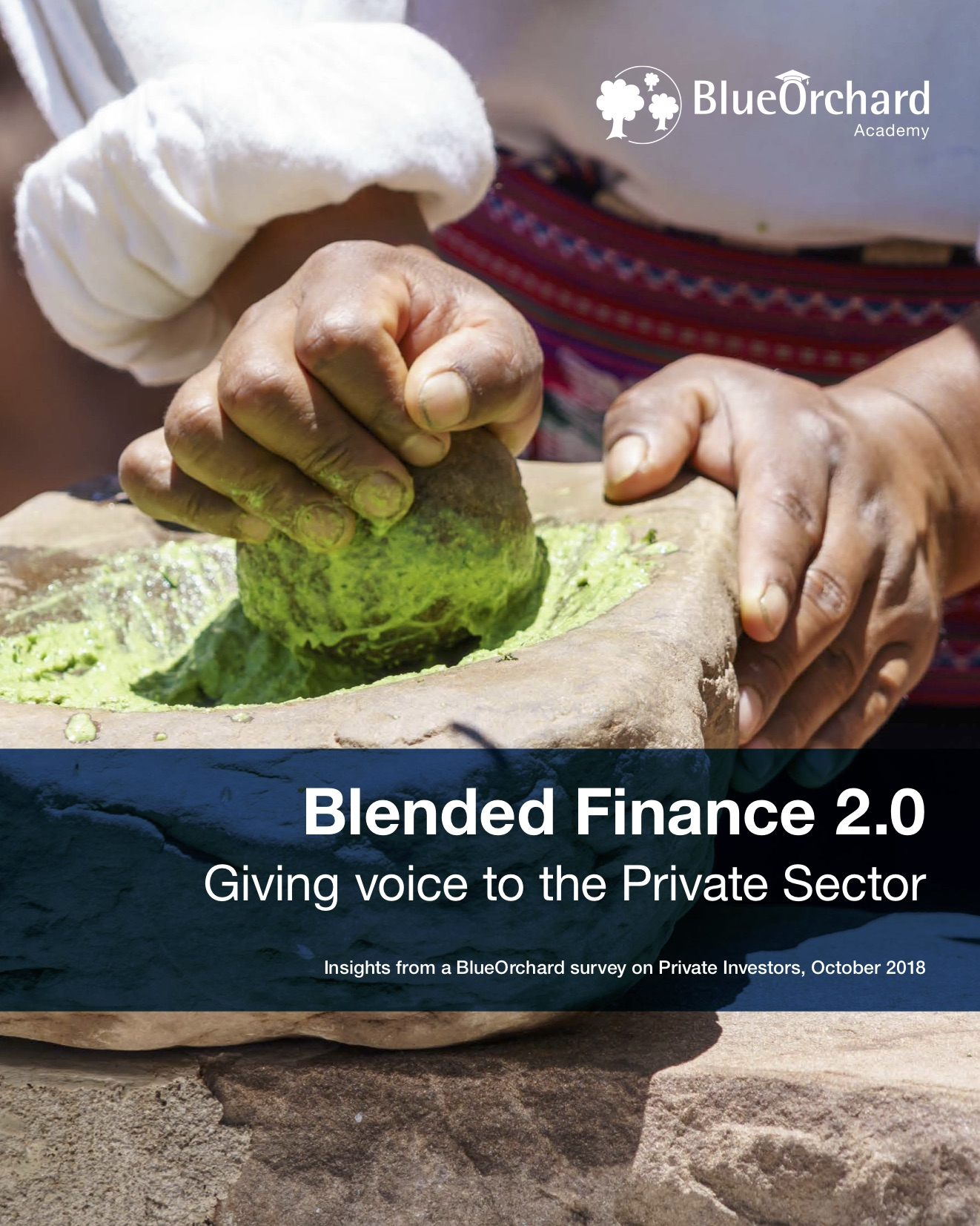 Blended Finance 2.0– Giving voice to the Private Sector