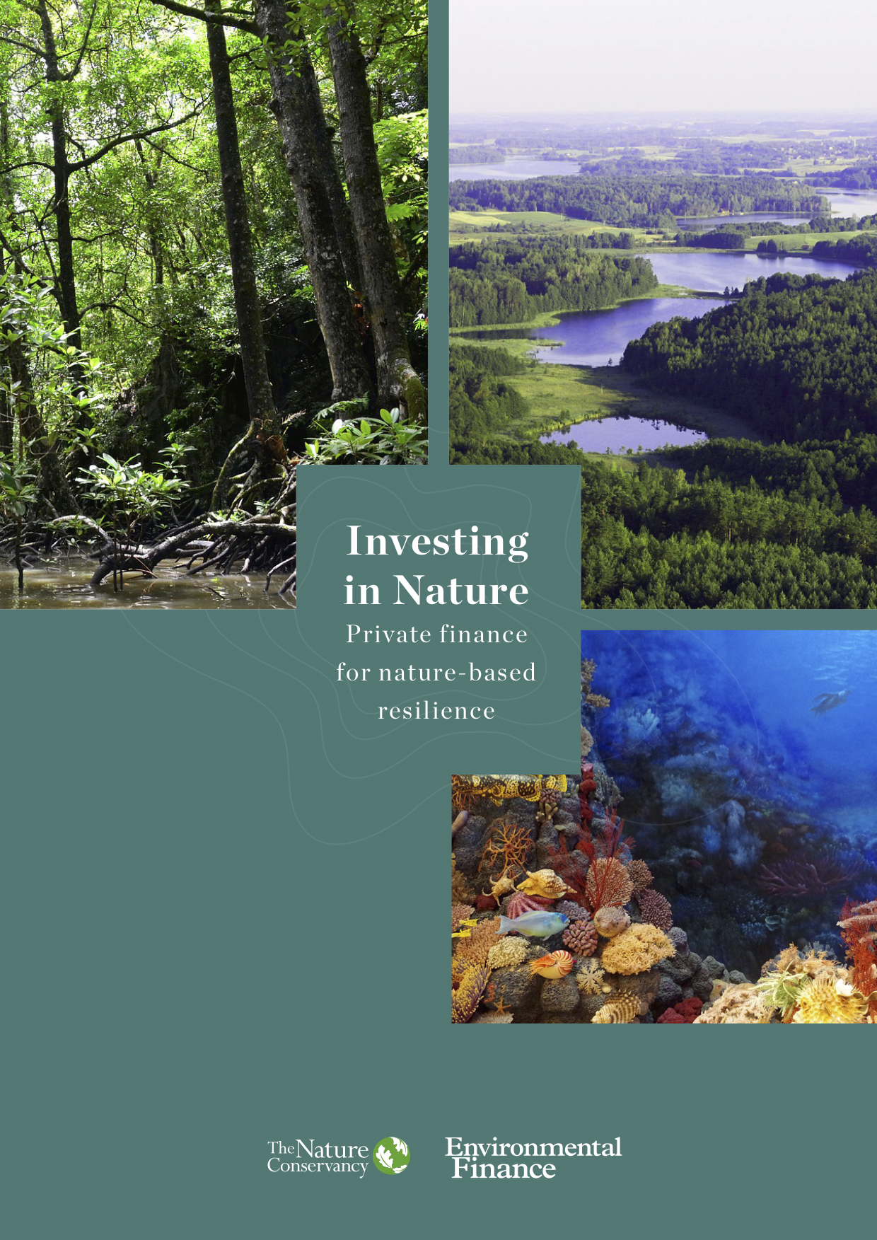 Investing in Nature: Private finance for nature-based resilience