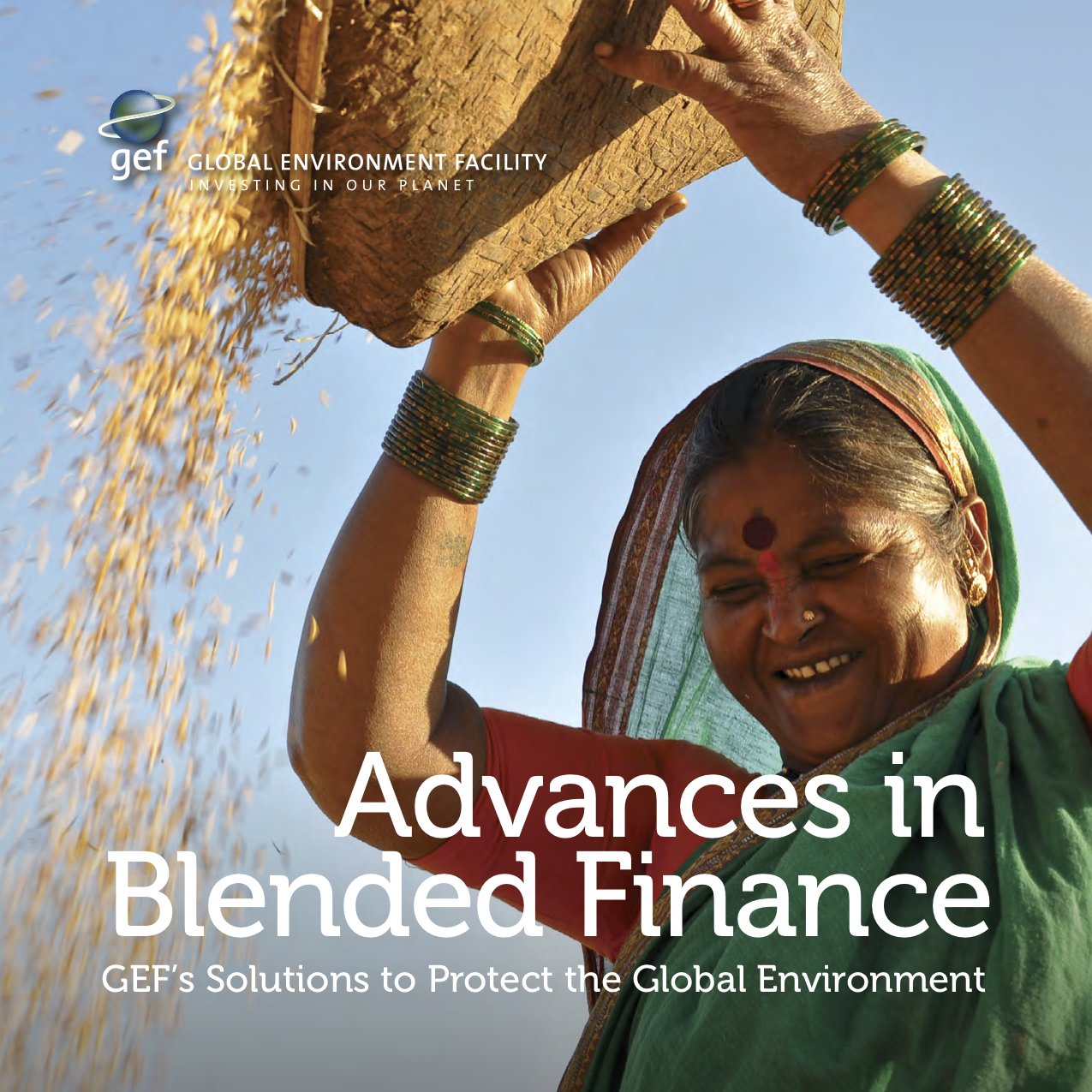 Advances in Blended Finance: GEF's Solutions to Protect the Global Environment
